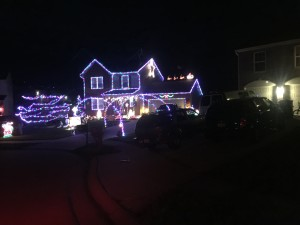 41005 christmas lights displays