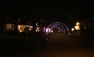 Bluestm christmas lights